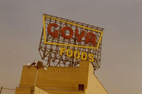 goya_1960_history